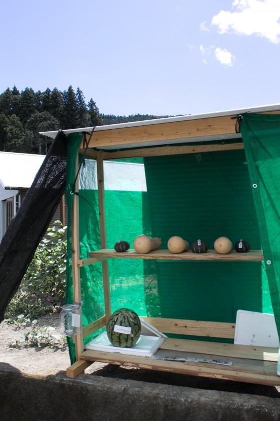 良心市の全貌。木組みの骨組みにトタン屋根をのせて、寒冷紗のようなもので周りを囲んで完成。料金箱を設置し、棚に野菜をセットすれば営業スタート。