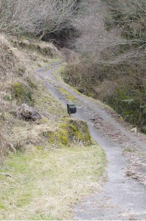 田舎の民家へのぼる坂道