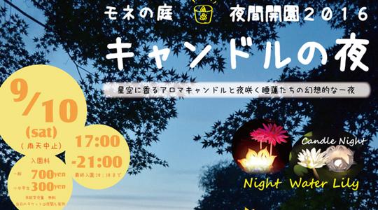 モネ夜-01_ec