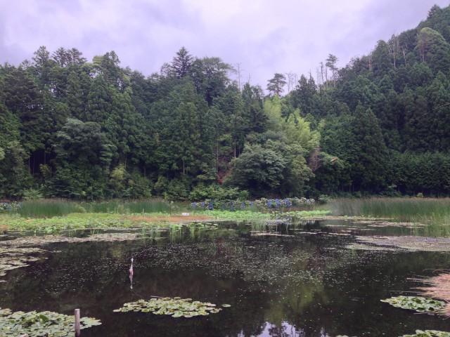 大蛇伝説が残る神池地域の「女池」