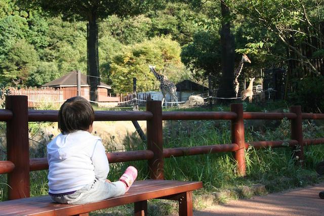 里子と一緒に香南市の「のいち動物公園」へ