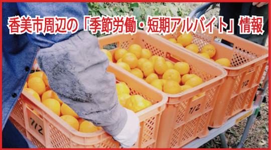 香美市の季節労働・短期アルバイト情報