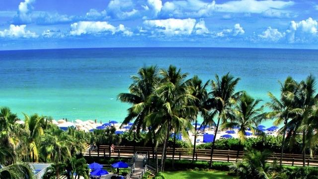 マイアミビーチ640