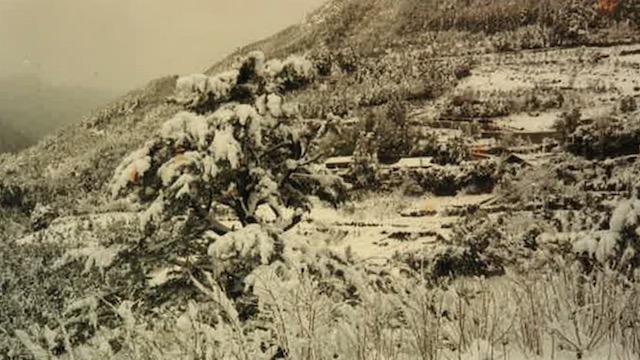神池雪景色