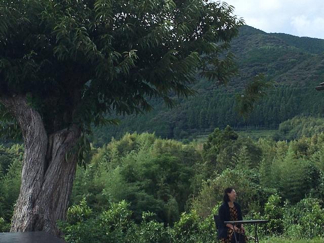 樹齢100年子超える大きな栗の木のしたでくつろぐ香奈美さん